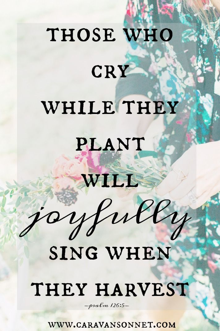 Psalm 126: 5 Those sowing seed with tears Will reap with a joyful shout.  6 The one who does go out, though weeping, Carrying his bag of seed, Will surely return with a joyful shout, Carrying in his sheaves. A Song of the Ascents. Of Solomon