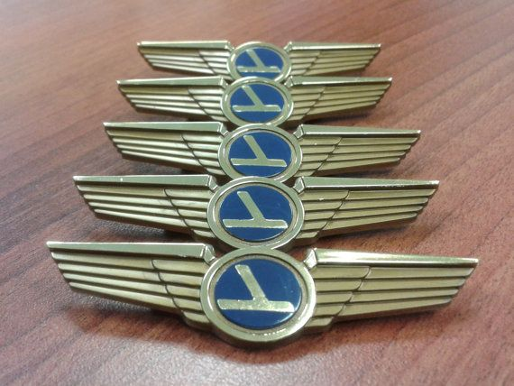 Airplane Birthday Party Favors (Pilot Wings Pins FIVE Pack) Ships Free