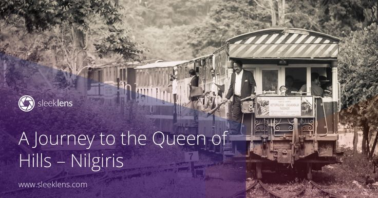 A Journey to the Queen of Hills, Nilgiris
