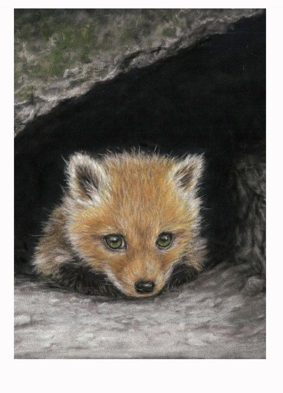 So cute!: Little Fox Print 5 x 7 by SavageArtworks on Etsy, $9.00
