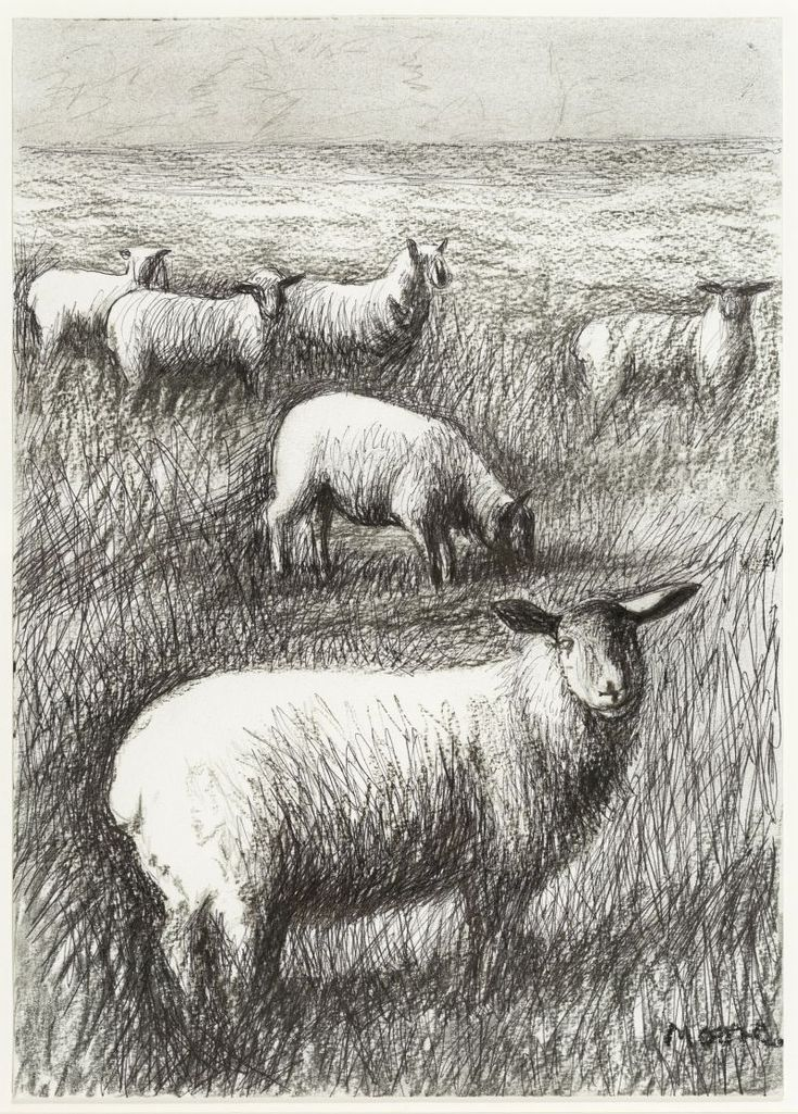 Henry Moore, Six Sheep in a Field (HMF 81(309)), 1981, Photo: HMF / Sarah Mercer