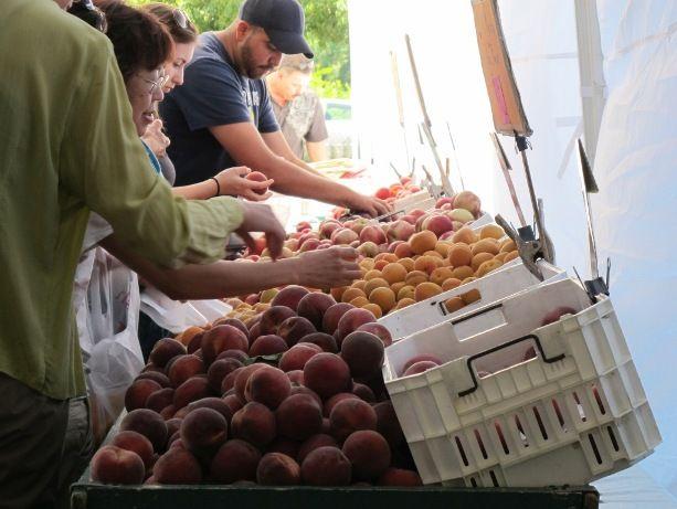 farmers market Sacramento