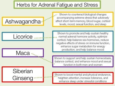 Best Foods To Improve Adrenal Function