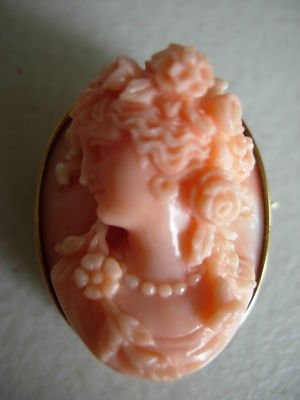 Stunning Victorian CameoThis is one of the best coral cameos you will ever see. Its victorian and set in 14kt yellow gold frame. The cameo is carved in great relief with flowers, drapes and swags.