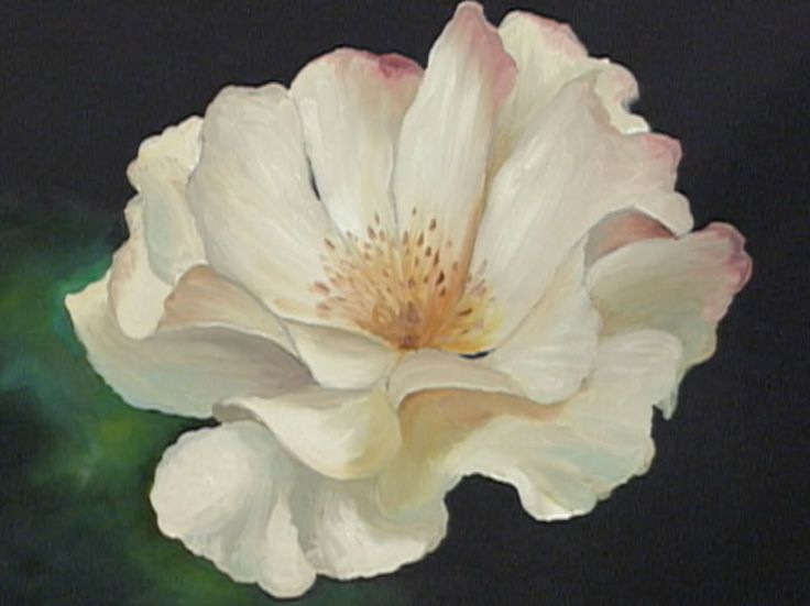 """Series 1 of the highly acclaimed PBS Series """" The Beauty of Oil Painting """" with Gary and Kathwren Jenkins. This is Episode 16 : Graphic Rose"""