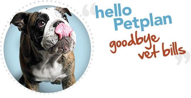 Pet Insurance Plans | Pet Health Insurance from Petplan :: Get 10% off lifetime ... 1