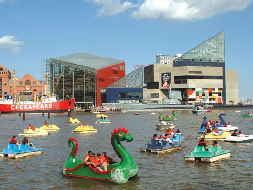 Baltimore, Maryland - Inner Harbor dragon shaped pedal boats. These things make for great photos but I'm always too lazy and tired when I rent one... Lol.