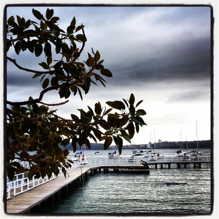 Silver waters of Balmoral Beach