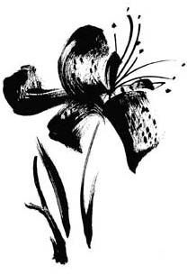 Brush Lily - Rubber Stamps by Penny Black