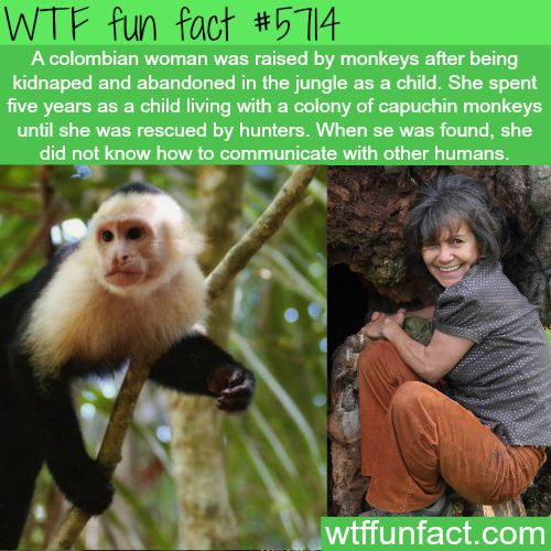 Colombian women raised by capuchin monkeys - WTF fun facts | See more fun videos: http://gwyl.io/