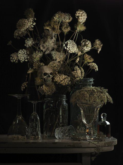 Fiona Pardington — Still Life with Hemlock.