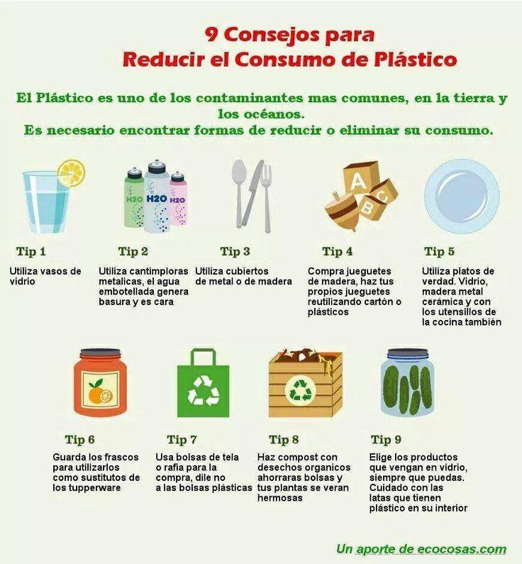 spanish essay el medio ambiente