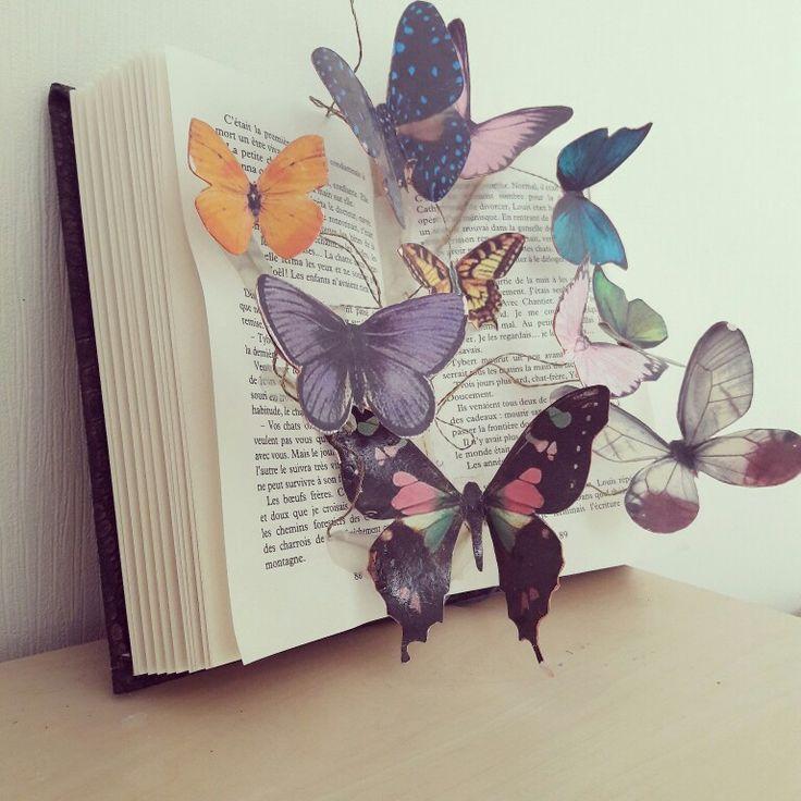 Livre magique Papillons