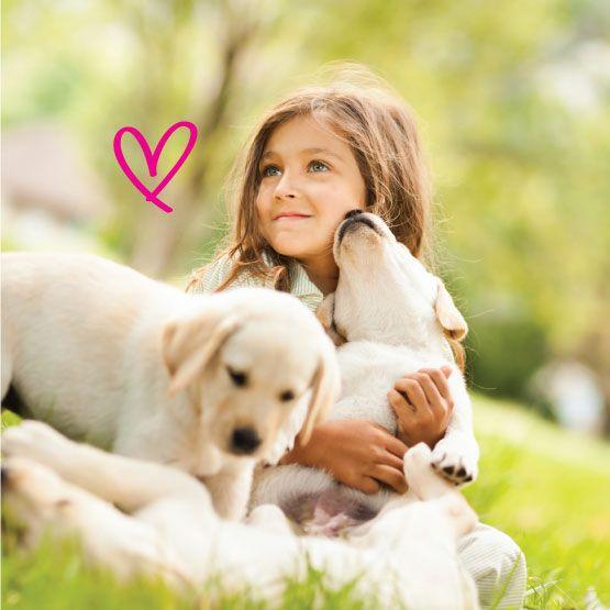 Fomenta en tus hijos el amor por los animales Algunas personas aseguran que el amor por los animales nace con cada quien, y dejan a la 'suerte del destino' el mal o buen trato que sus hijos le puedan dar a sus mascotas o animales cercanos. http://www.inkomoda.com/fomenta-en-tus-hijos-el-amor-por-los-animales/