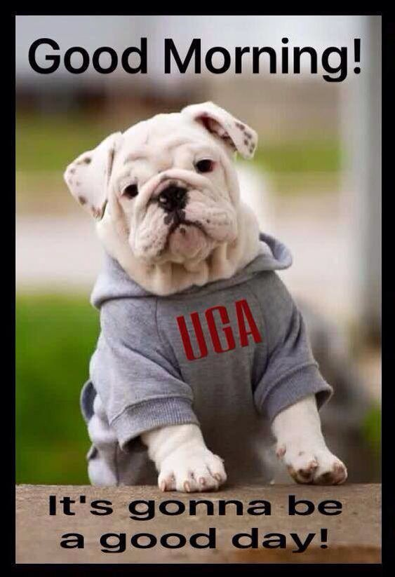 UGA.  There is always next year.  Still a Dawg Fan!!!