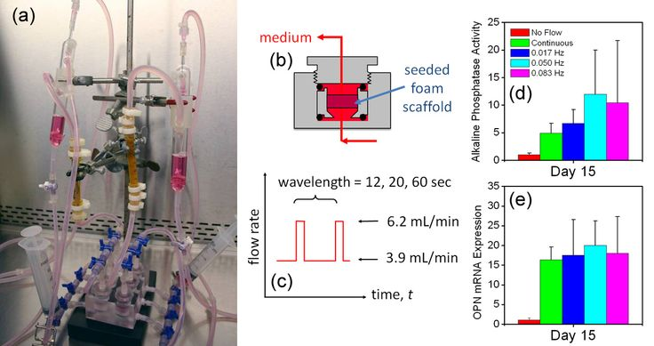 research paper bioreactor