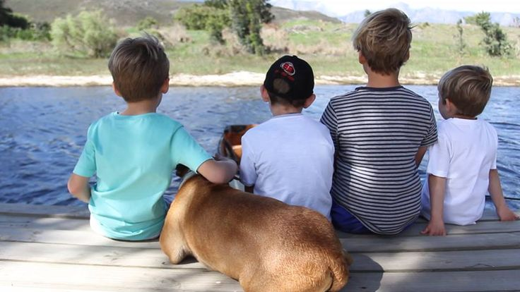 Holidaying without the four-legged members of the family is no fun. These 21 idyllic escapes for families and couples around SA welcome pets.  *Though every effort has been made to verify that these spots are pet-friendly