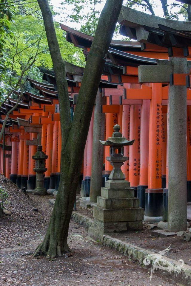 Japan / Tag 12 / Kyoto / Mit Johnnie Hillwalker unterwegs