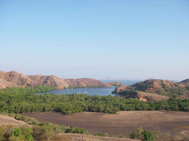 Pulau Komodo merupakan sebuah pulau yang mana terdapat di Kepulauan Nusa Tenggara. Pulau Komodo juga dikenal sbg habitat asli hewan komodo. Pulau ini juga termasuk lokasi Taman Nasional Komodo yang mana dikelola oleh Pemerintah Pusat. Pulau Komodo ada di sebelah timur Pulau Sumbawa, yang mana dipisahkan oleh sebuah Selat Sape.