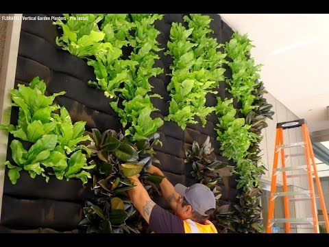 vertical gardening -  vertical gardening vegetables