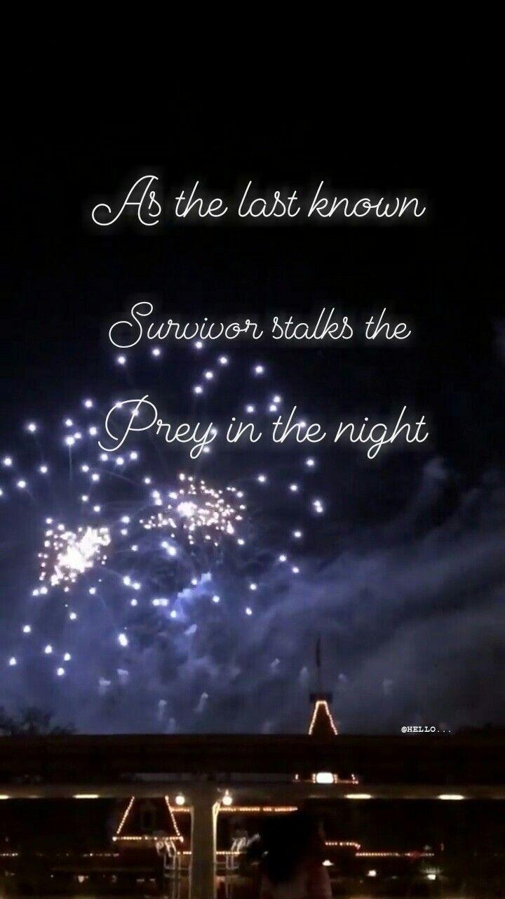 Tumblr Quote Tumblr Quote Night Firework Dark Hello Fireworks Tumblr Quotes Night