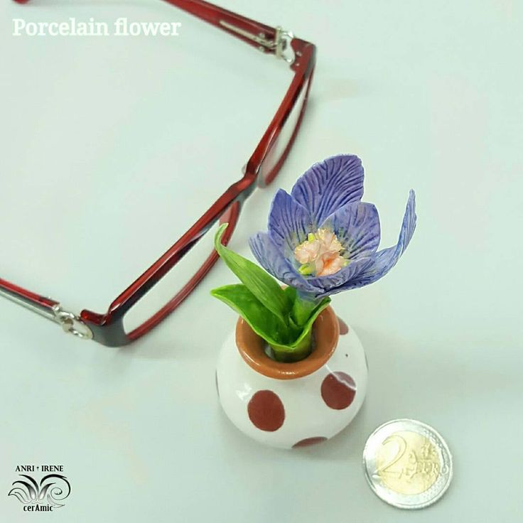 42 отметок «Нравится», 1 комментариев — Fine porcelain Anri Irene (@anri.irene_porcelain.art) в Instagram: «Porcelain crocus, details. Miniature.  #porcelain #porcelainflowers #ceramics #ceramicflowers…»