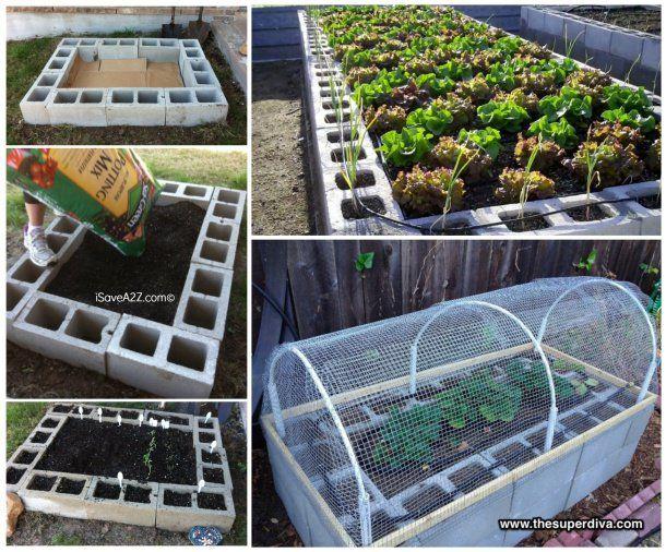 best 20 raised garden beds cinder blocks ideas on pinterest bed blocks diy raised garden beds and easy garden