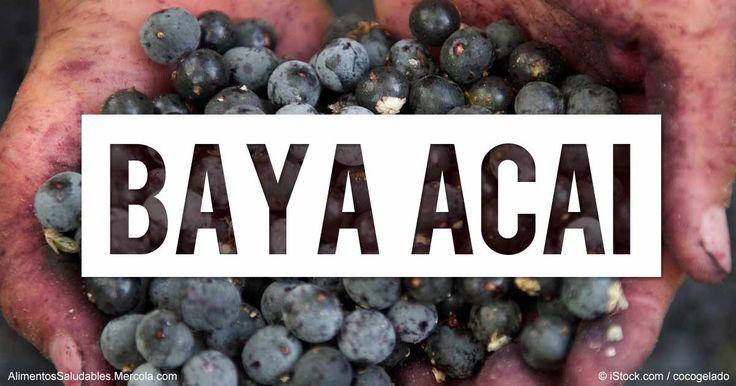 Descubra más sobre los beneficios de la bayas acai, propiedades de la guayaba, recetas saludables y más con el fin de enriquecer su alimentación.