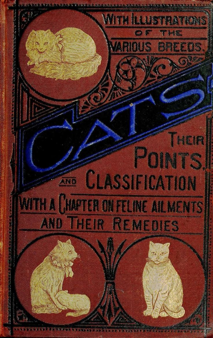 Cats : Their Points And Characteristics Curiosities Of Cat Life, With A  Chapter On Feline