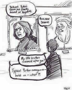 Potter spawn