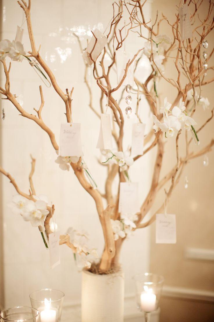 Weddding wishing tree