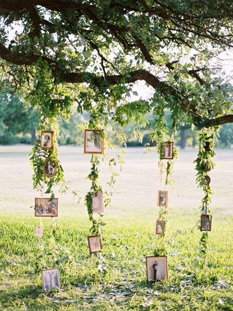 Create your very own family tree by hanging up photos of your loved ones! More outside of the box outdoor wedding ideas on our blog!