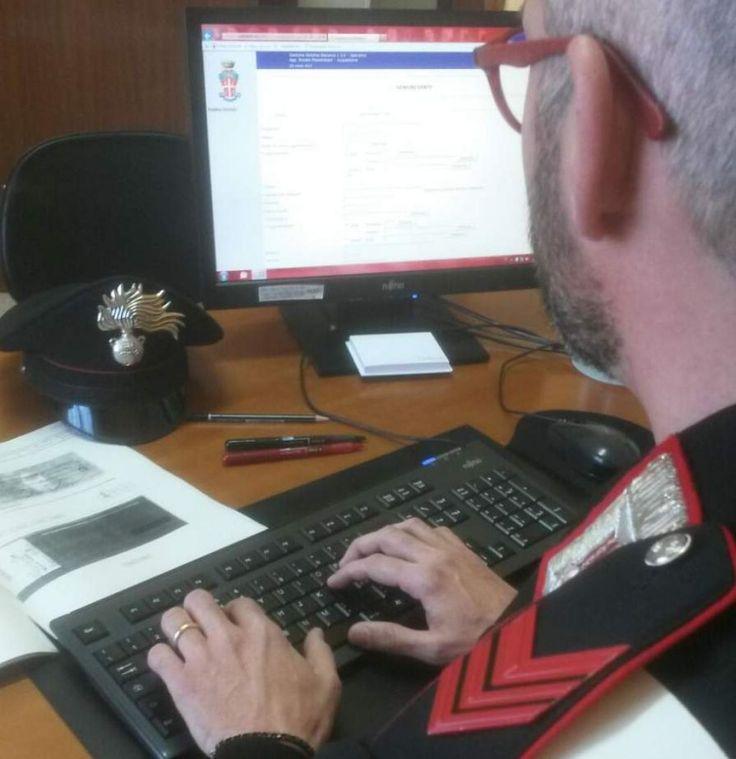 Calitri (Avellino),  acquista un puledro ma l'assegno è rubato: denunciato dai Carabinieri