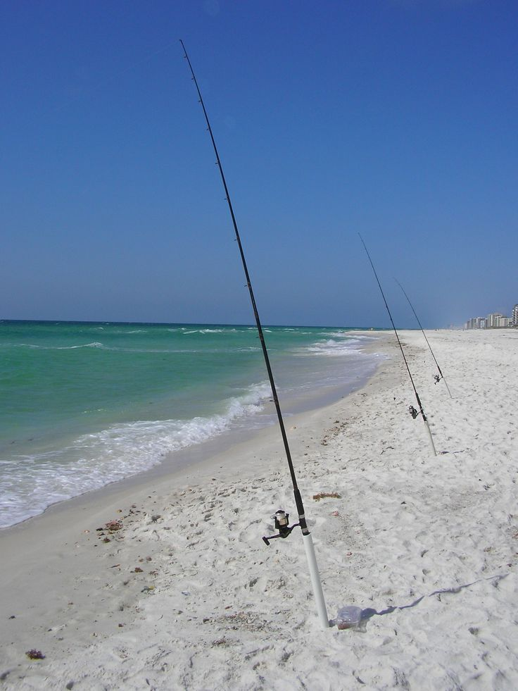 17 best images about surf fishing on pinterest surf for Pensacola beach fishing