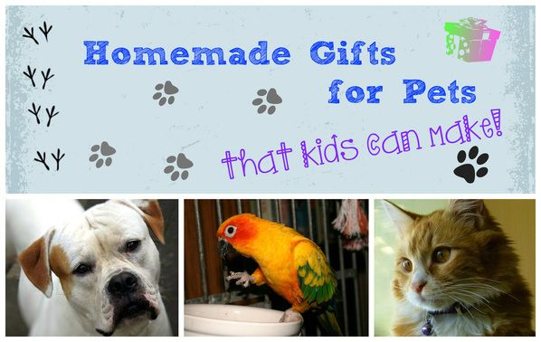 Gifts for Pets That Kids Can Make from P is for Preschooler