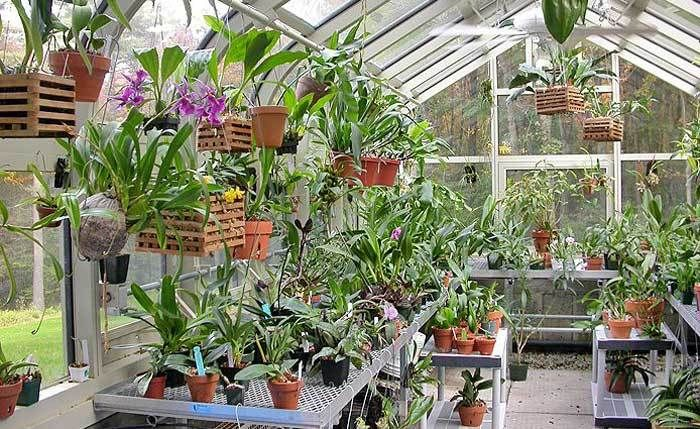 Garden Building Services: Complete Beginner's Guide to #Garden #GreenHouse