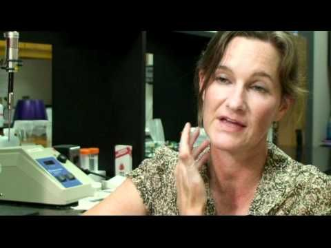 ▶ The Vagus Nerve and its importance to PTSD - YouTube