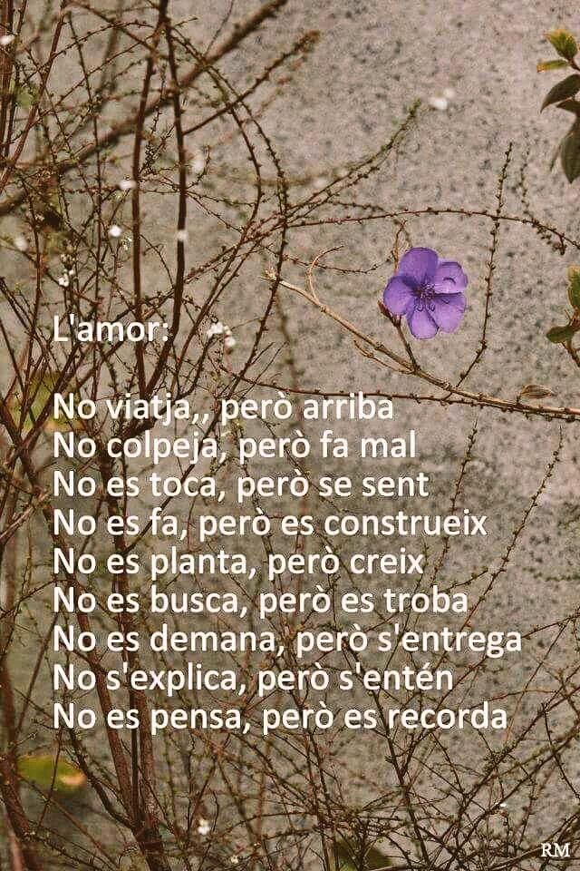 30 best Frases i dites images on Pinterest | Pretty quotes, School ...