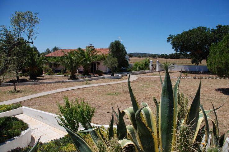 Gelegen in de regio Alentejo hebben wij dit leuke natuurhuis te huur. Ideaal voor mensen die de vakantie in de binnenlanden van Portugal willen doorbrengen.