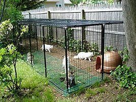 Modular Cat Cages, Kennels and Cat Enclosure Systems