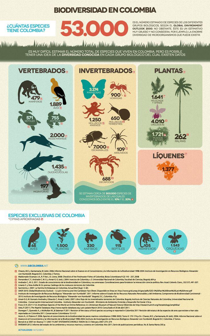 ¿Cuántas especies tiene Colombia? - Cifras de Biodiversidad en Colombia - @sibcolombia