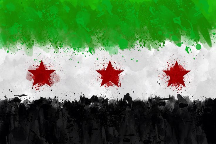 Our Revolution flag in Syria