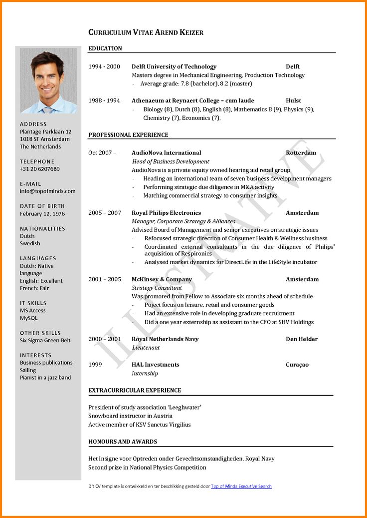 curriculum vitae in english