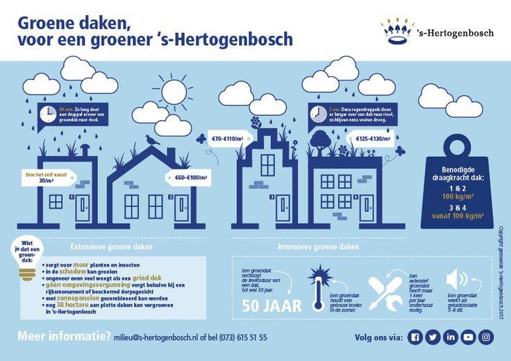 Groene daken infographic gemeente 's-(C) Hertogenbosch 2017