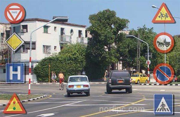 Como Sacar La Licencia De Conducción En Cuba Guía De Tránsito Cuba Permiso De Conducir Conduccion