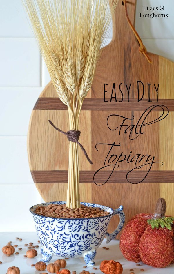 Easy DIY Fall Topiary and a Giveaway! | http://www.lilacsandlonghorns.com/easy-diy-fall-topiary-a-giveaway.html