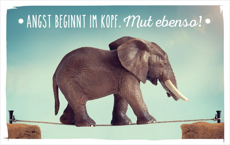 Angst beginnt im Kopf. Mut ebenso!   #vossentowels #postcardswithlove #positivequote #thinkpositive #motivation #inspire