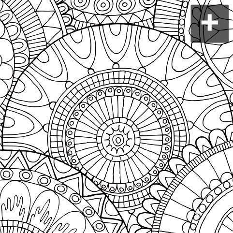 956 best coloring adults images on pinterest coloring books drawings and adult coloring