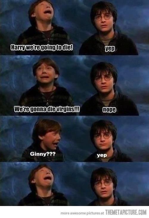 Harry and Ginny Dirty Joke