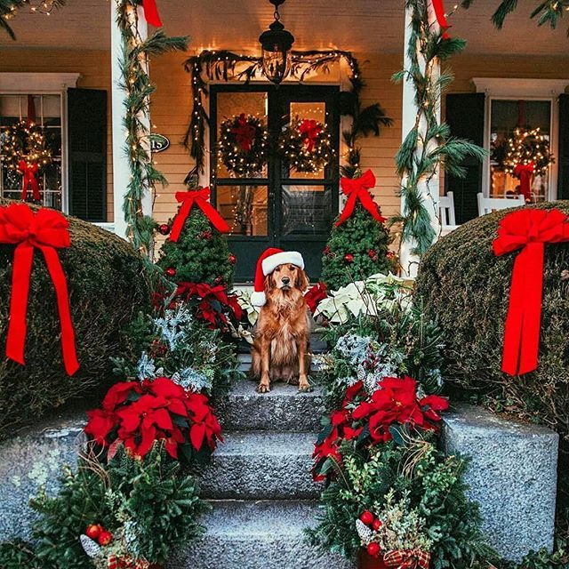 Como Decorar El Frente De Mi Casa En Navidad Decoracion Navidena Para Puertas Ideas Para D Christmas Decorations Christmas Mood Outside Christmas Decorations